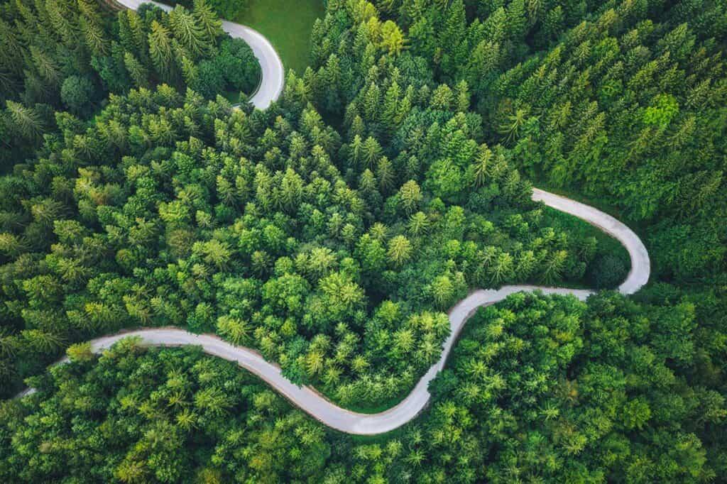 Wald aus Vogelperspektive als Symbol für nachhaltige Regaldisplays